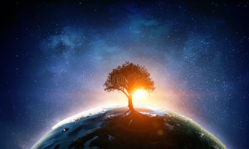 Nasz unikalny wszechświat zdjęcie royalty free