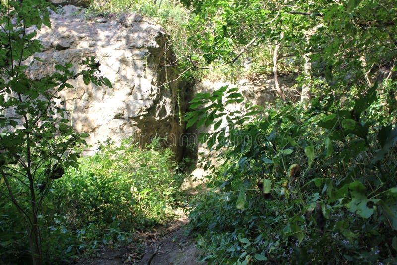 Natürlich gebildete mysteriöse Höhlen nähern sich Schlangenhügel lizenzfreies stockbild