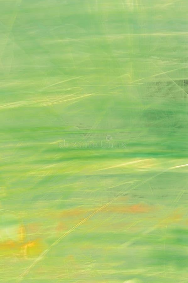 Natürliche Bewegung unscharfer Sommer-Gras-Hintergrund stockbilder