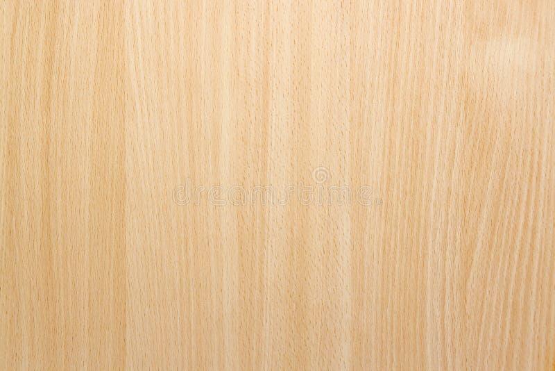 Natürliche Buchenholz-Hintergrund-Beschaffenheit stockfoto