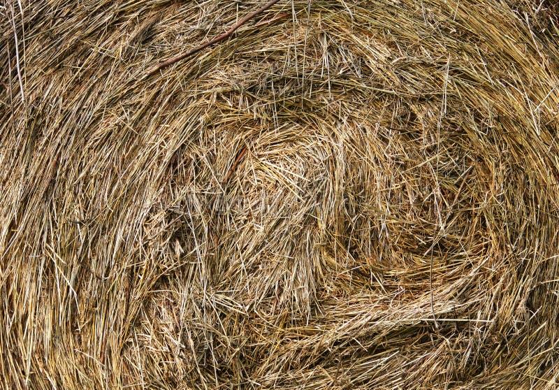 Natürliche eco Beschaffenheit lizenzfreies stockfoto