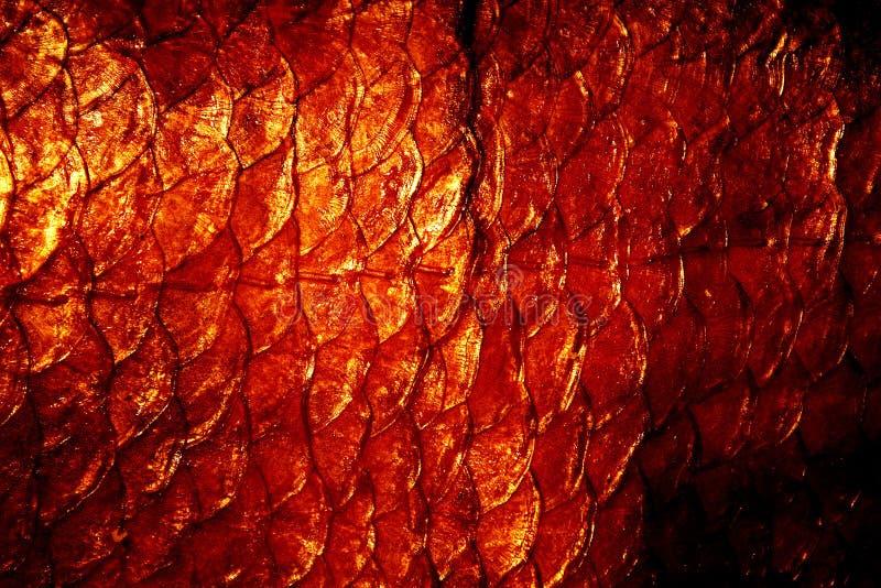 Download Natürliche Exuviae Beschaffenheit Stockfoto - Bild von hintergrund, nahrung: 41292