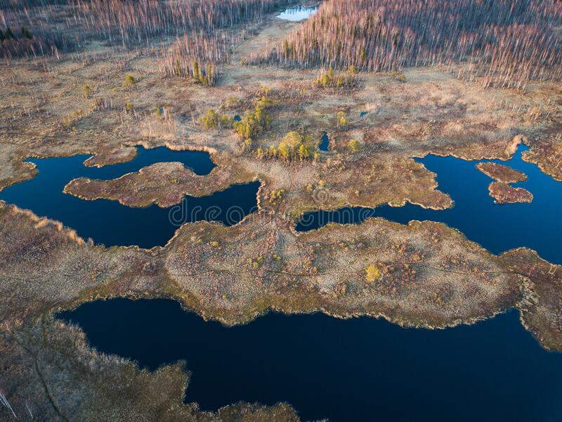 Natürliche Grenze Alter Sumpf Moskau, Russland lizenzfreie stockfotos