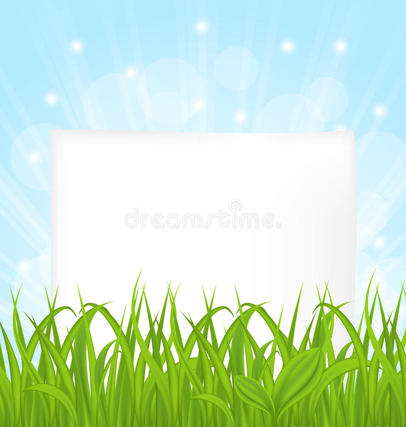Natürliche Karte mit grünem Gras und Papier bedecken lizenzfreie abbildung