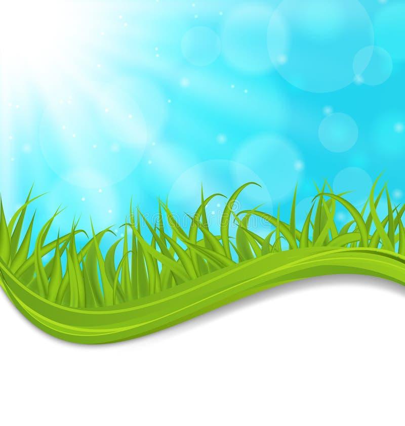 Natürliche Karte des Frühlinges mit grünem Gras lizenzfreie abbildung