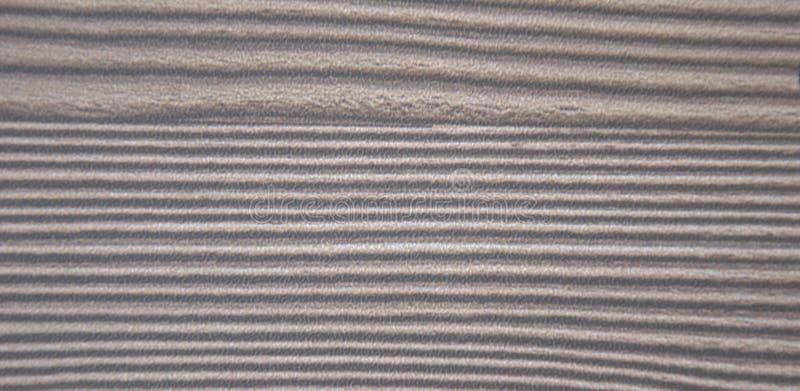 Natürliche Kiefer künstlich gealtert und dunkel, dicht aufgereift lizenzfreie stockbilder