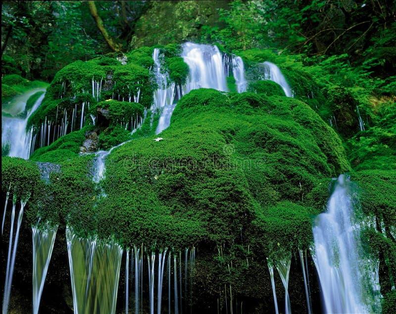 Natürliche Landschaft lizenzfreie stockfotografie