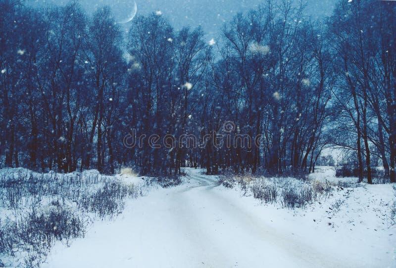 Natürliche Landschaft des Winters lizenzfreies stockbild