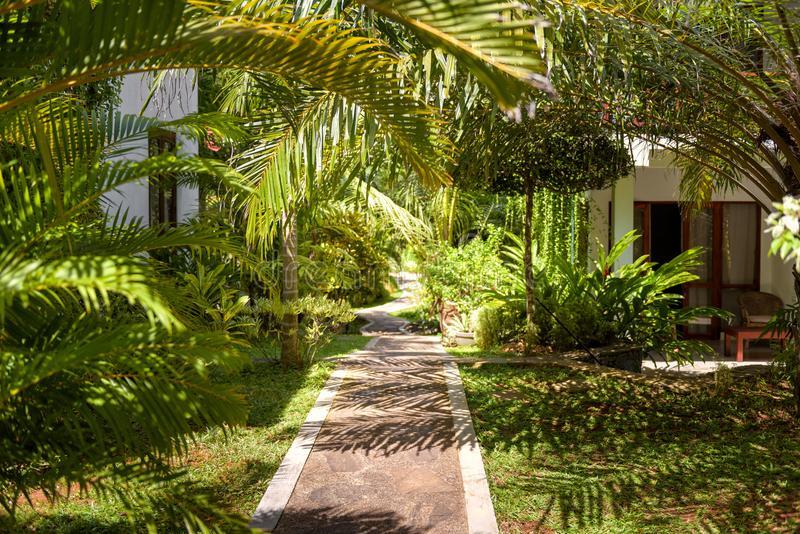 Natürliche Landschaftsgestaltung in einem tropischen Hotel lizenzfreie stockbilder