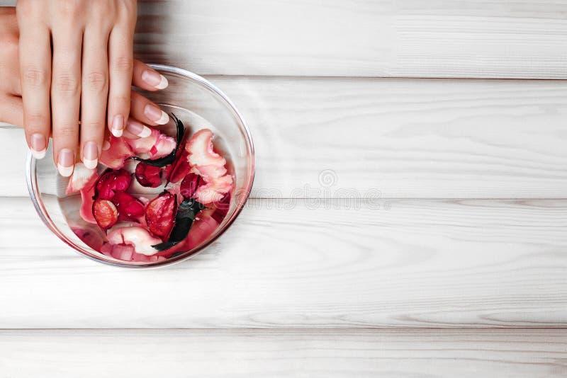 Natürliche Maniküre, Handpflege Tränkender Finger nagelt im Bad mit Kräuteröl und mit Blumen auf weißem Holztisch Kopieren Sie Pl lizenzfreie stockfotografie