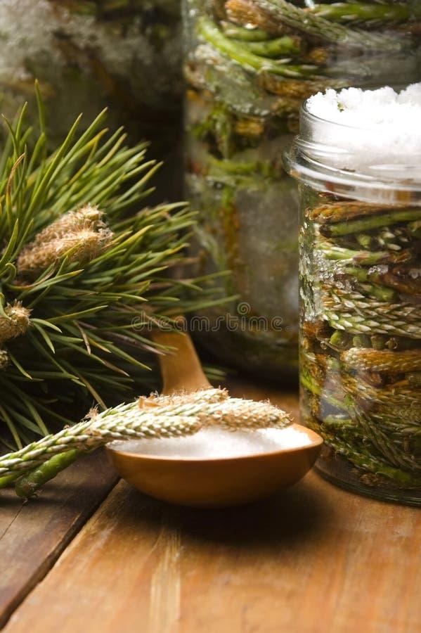 Natürliche Medizin. Sirup gebildet von den Kiefersprößlingen lizenzfreies stockbild