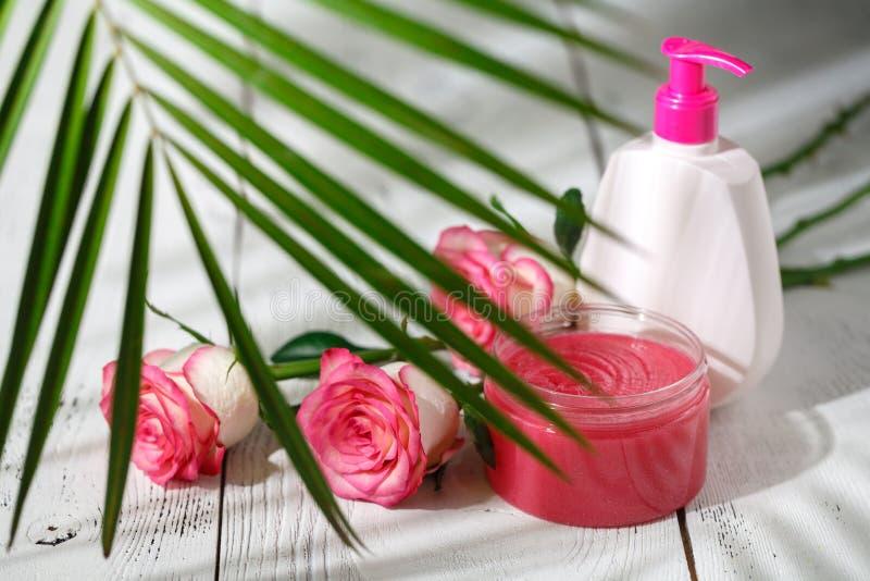 Natürliche organische Kosmetik für Haarpflege Badprodukte, Badezimmersatz stockfotografie