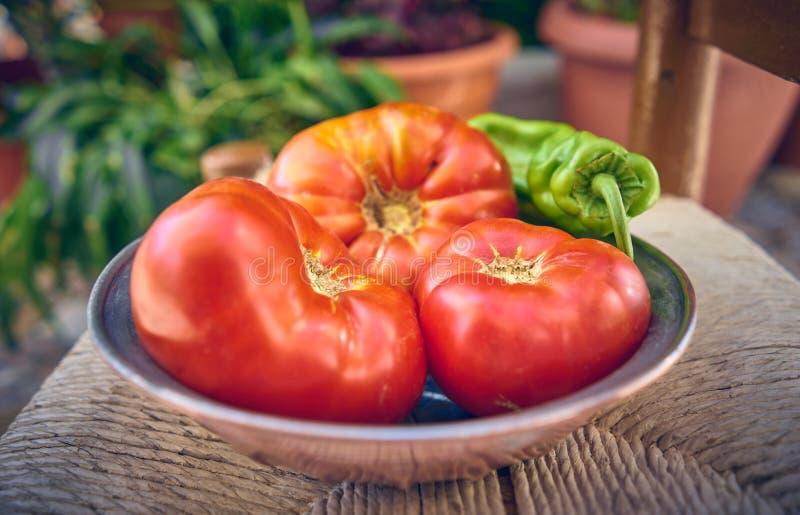 100% natürliche organische Tomaten vom Garten Große nicht-transgene Tomaten stockbild