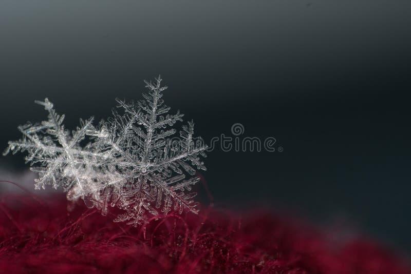Natürliche Schneeflockennahaufnahme Winter, kalt lizenzfreie stockfotos