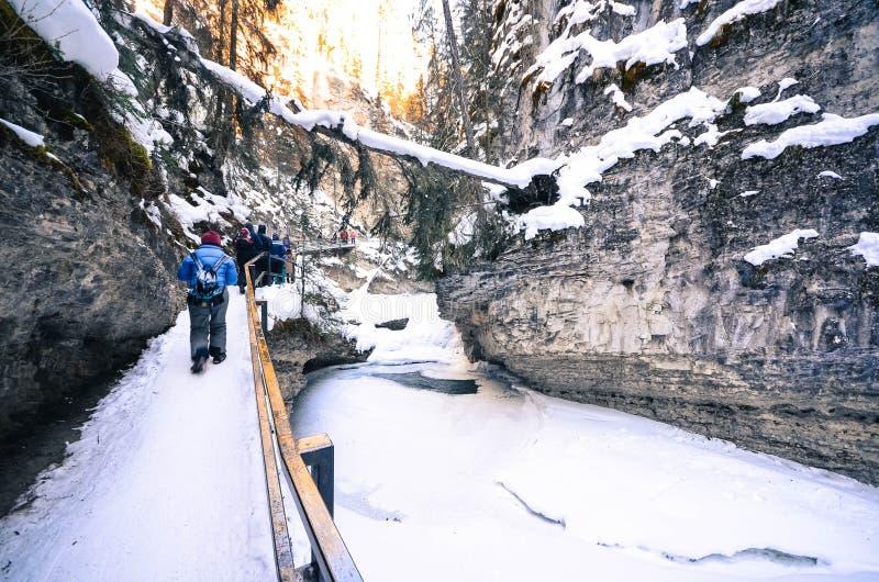 Natürliche Spur zu Johnston Canyon Waterfalls stockfoto