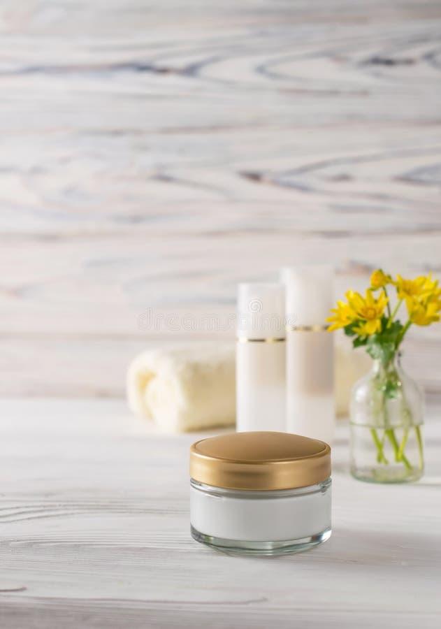 Natürliche und organische Behandlungskosmetik des Gesichtes und der Körperpflege lizenzfreie stockfotografie