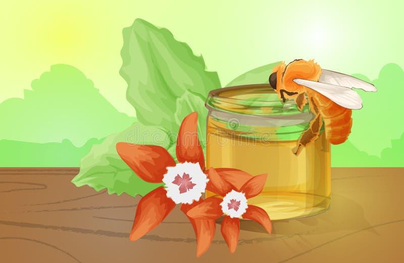 Natürlicher Blumenhonig bunt mit Bienenwabengänseblümchen-Blumenbienen und flüssigem realistischem Vektor des Honigs lizenzfreie abbildung