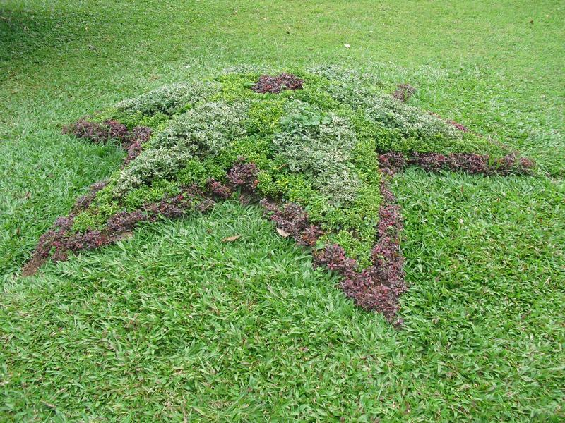 Natürlicher Garten von Sri Lanka lizenzfreie stockfotos