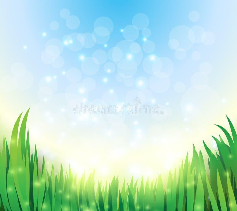 Natürlicher grüner Hintergrund des Vektors mit Himmel und Gras lizenzfreie abbildung