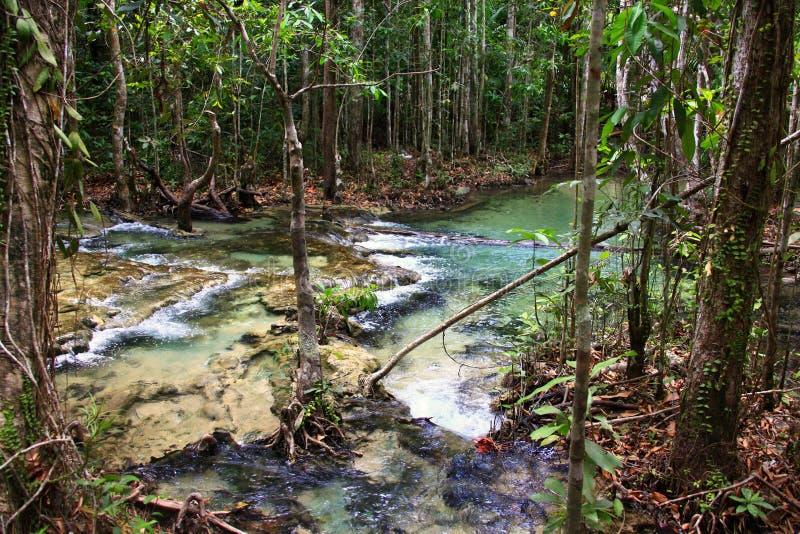 Natürlicher Heißwasserstrom stockfotografie