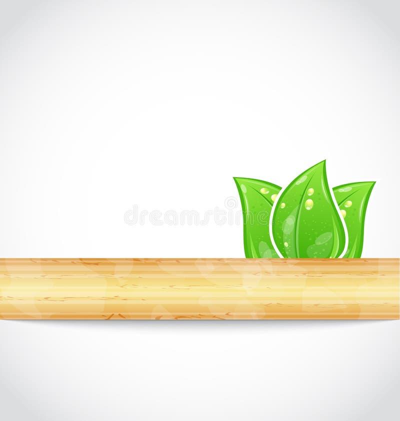 Natürlicher Hintergrund mit eco Grün verlässt und Holz lizenzfreie abbildung