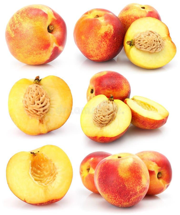 Natürlicher Pfirsich trägt die Ansammlung Früchte, die auf Weiß getrennt wird stockfotografie