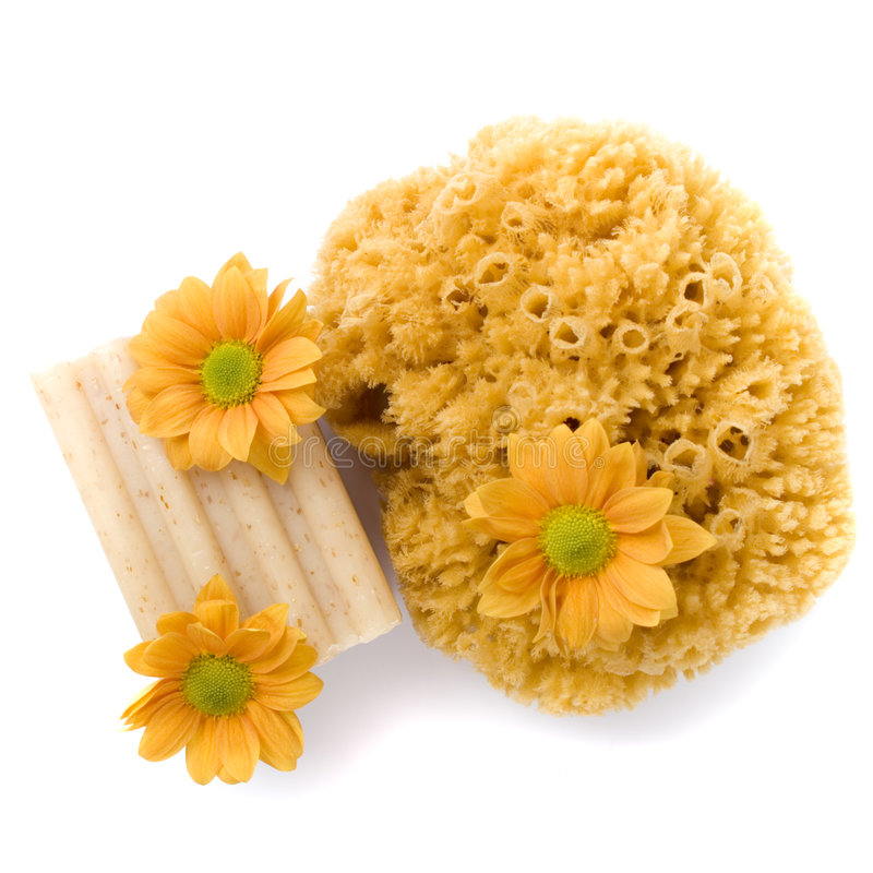 Natürlicher Schwamm, Seife und Blumen stockfotografie