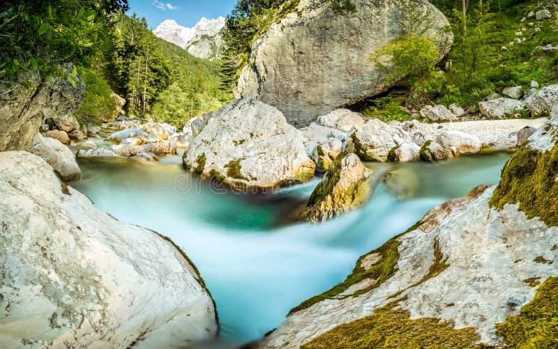 Natürlicher wilder Fluss mit Türkiswasserstromschnellen im Waldgebirgstal stockbilder