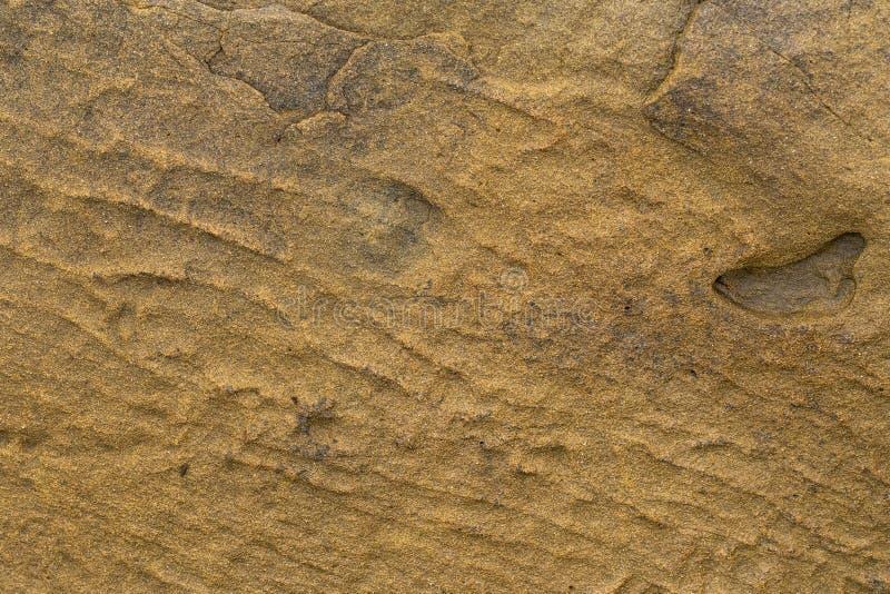 Natürliches backgound Beschaffenheit des Sandsteins im Abschluss oben stockfotos