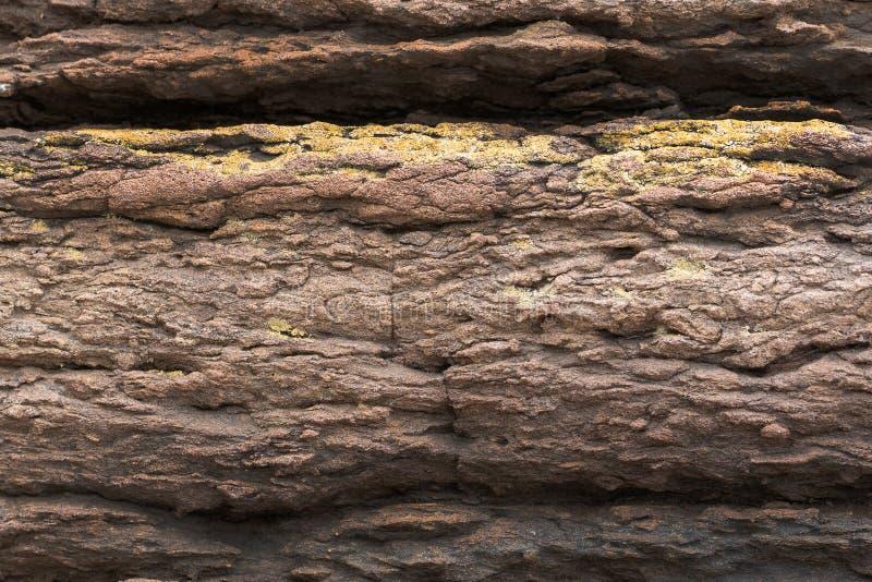 Natürliches backgound Beschaffenheit von slatestone mit Korrosionsmuster lizenzfreies stockfoto
