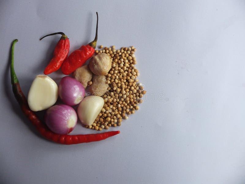 Natürliches Bild von Küchengewürzen lizenzfreie stockfotos