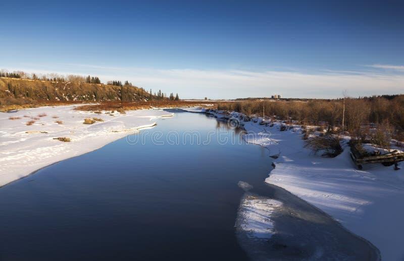 Natürliches Erholungsgebiet-frühes Frühjahr Calgary Alberta Ellbogen-Fluss Weaselhead lizenzfreies stockfoto