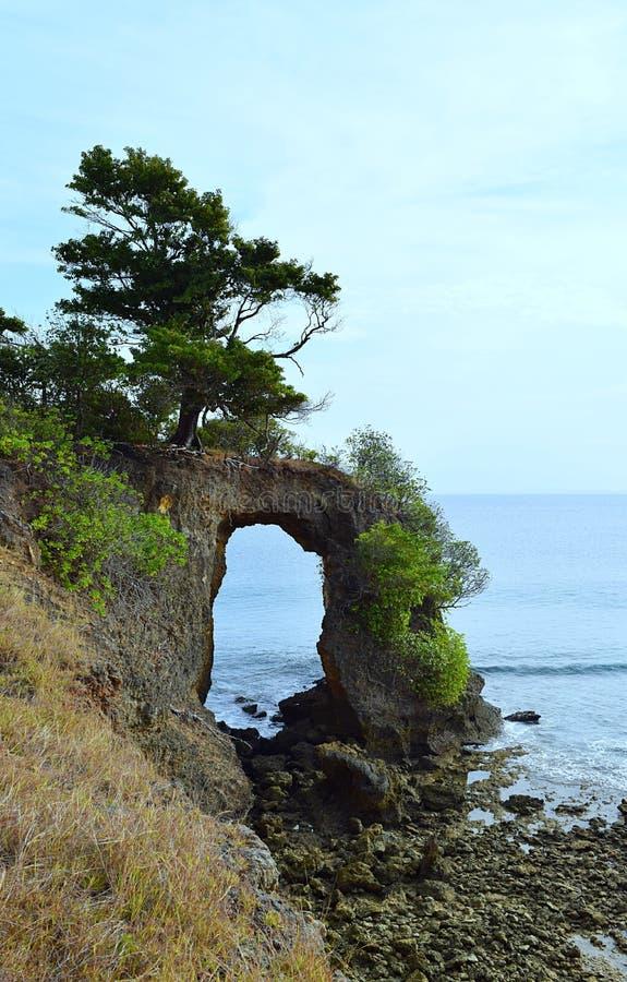 Natürliches Howrah Coral Bridge mit Hügel, dem Grün und meeres- Laxmanpur-Strand, Neil Island, Andaman, Indien stockfotos