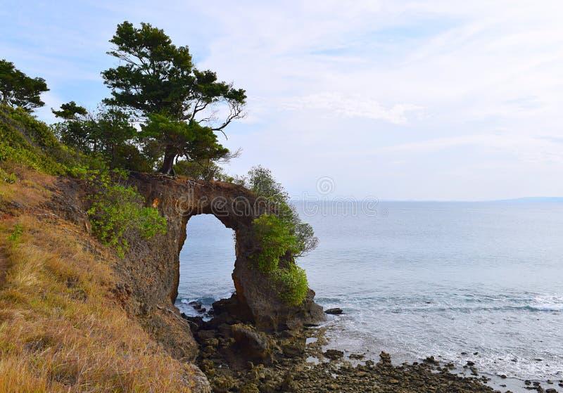 Natürliches Howrah Coral Bridge mit Hügel, dem Grün und meeres- Laxmanpur-Strand, Neil Island, Andaman, Indien lizenzfreies stockbild