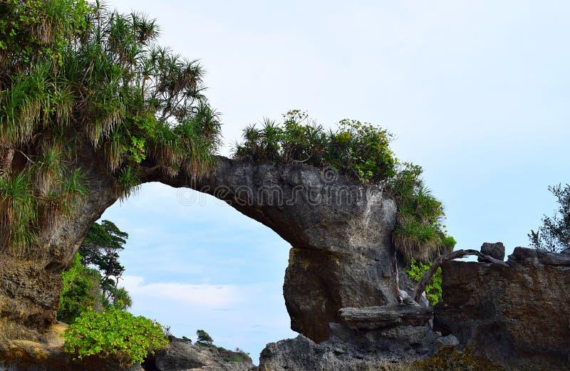 Natürliches Howrah Coral Bridge mit Hügel und dem Grün, Laxmanpur-Strand, Neil Island, Andaman, Indien lizenzfreies stockfoto