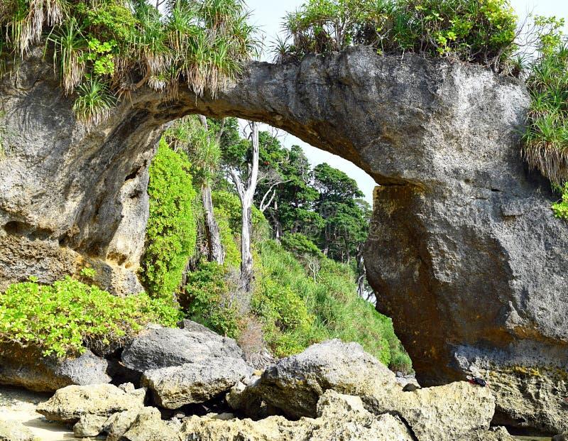 Natürliches Howrah Coral Bridge mit Hügel und dem Grün, Laxmanpur-Strand, Neil Island, Andaman, Indien lizenzfreie stockbilder