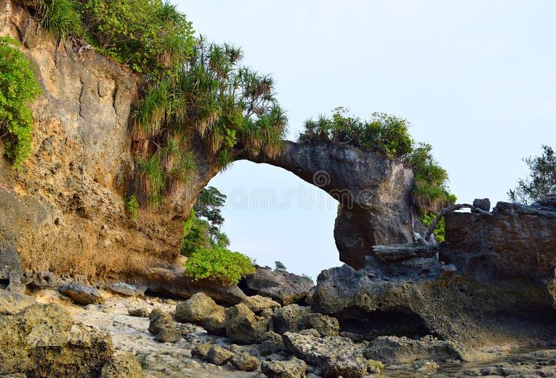 Natürliches Howrah Coral Bridge mit Hügel und dem Grün, Laxmanpur-Strand, Neil Island, Andaman, Indien stockfoto