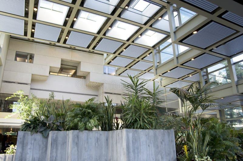 Natürliches Licht des grünen eco Bürogebäudeinnenraums stockfoto