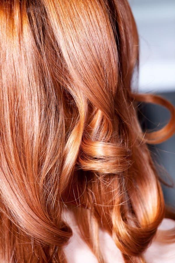Natürliches lockiges Haar stockbilder