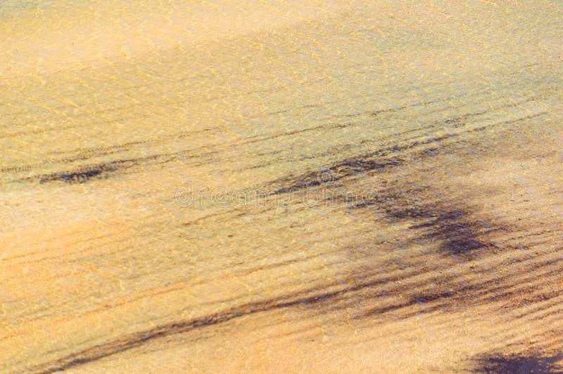 Natürliches Muster - Denham stockfotos