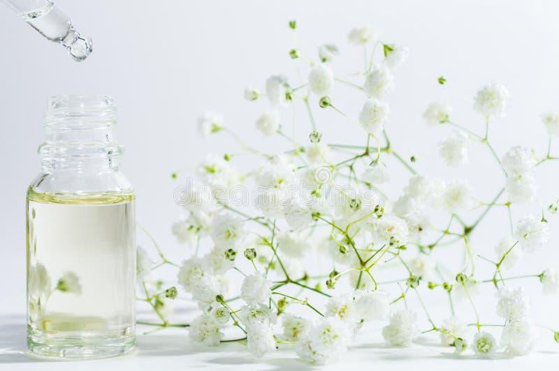Nat?rliches Serum in der kosmetischen Flasche mit Tropfenz?hler und weniger Blume auf wei?em Hintergrund Organische BADEKURORT-Ko stockbilder
