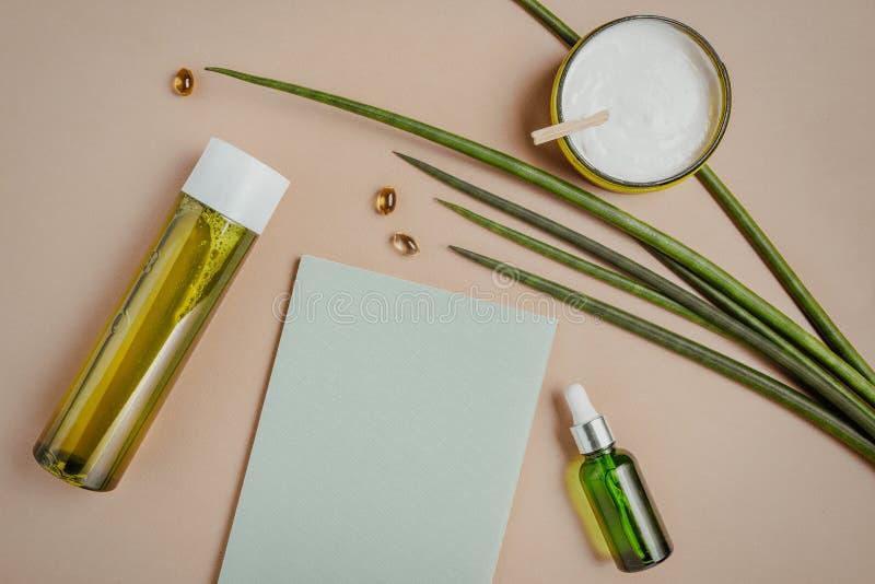 Nat?rliche Kosmetik Serum, Shampoo, Haarmaske Organisches Sorgfaltkonzept Flache Lage, Kopienraum stockfoto