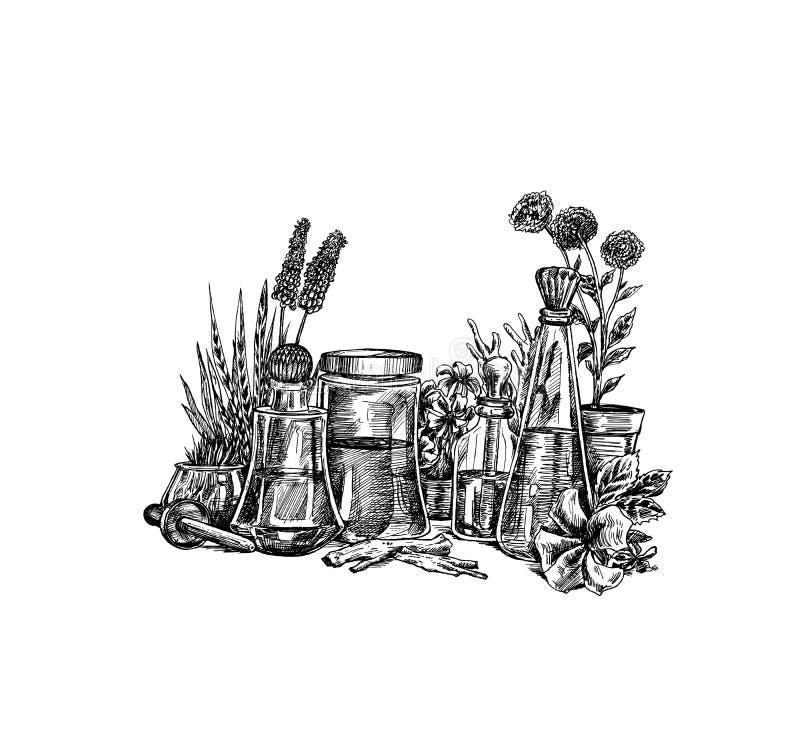 Nat?rliche organische Botanik und wissenschaftliche Glaswaren, alternative Krautmedizin, nat?rliche Hautpflegesch?nheitsprodukte, stock abbildung