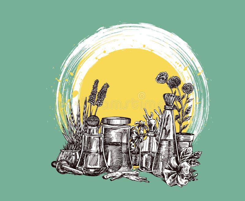 Nat?rliche organische Botanik und wissenschaftliche Glaswaren, alternative Krautmedizin, nat?rliche Hautpflegesch?nheitsprodukte stock abbildung