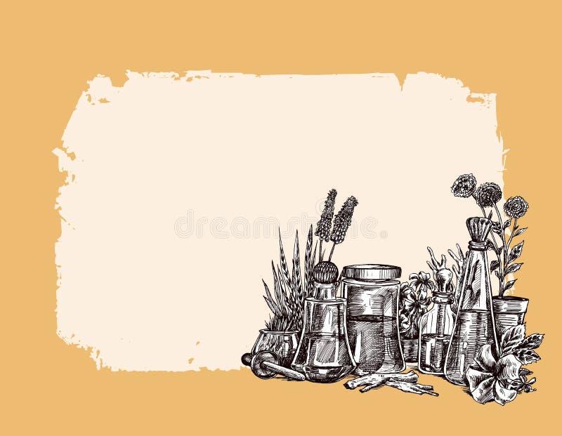Nat?rliche organische Botanik und wissenschaftliche Glaswaren, alternative Krautmedizin, nat?rliche Hautpflegesch?nheitsprodukte vektor abbildung