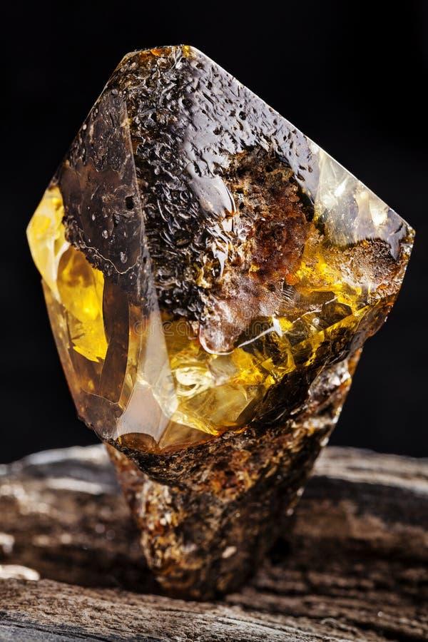 Nat?rlicher bernsteinfarbiger Stein Ein St?ck schmutziger Bernstein mit transparenter gelber Schicht auf St?ck entsteintem Holz stockfotografie