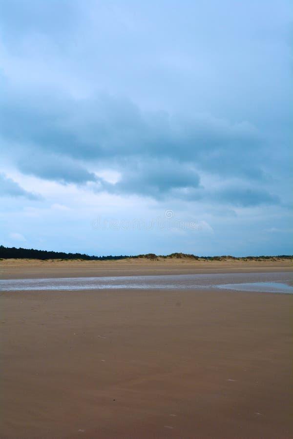 Nat zandig strand en bos in de afstand, Noordelijke Overzees, Holkham-strand, het Verenigd Koninkrijk royalty-vrije stock afbeelding