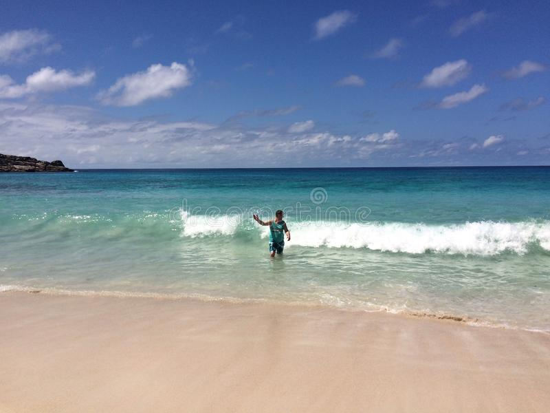 natação fotografia de stock royalty free