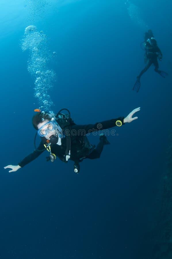 Natação do mergulhador do mergulhador na água azul desobstruída fotos de stock royalty free