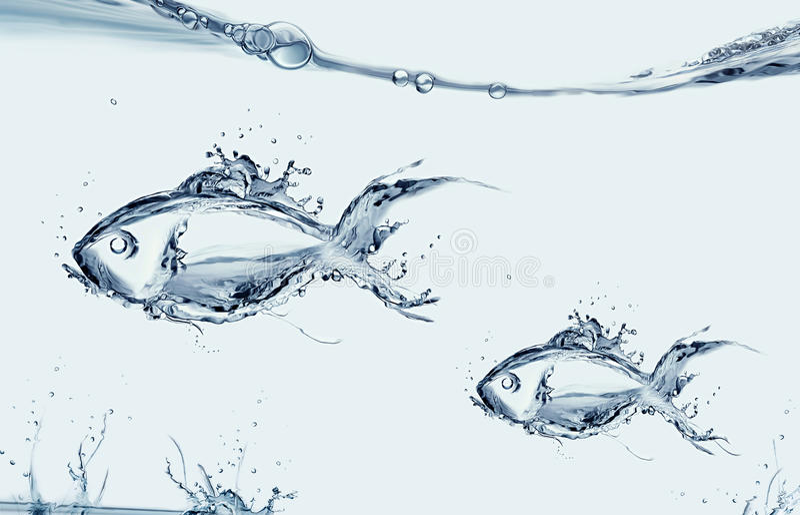 Natação dos peixes e da filha da mãe foto de stock